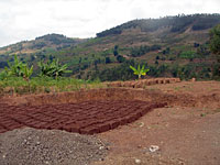Bricks drying in preparation for building
